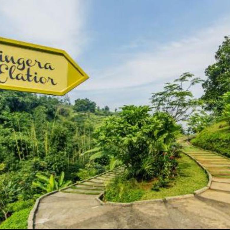 Resort dan Resto masih aktif  Area Punclut