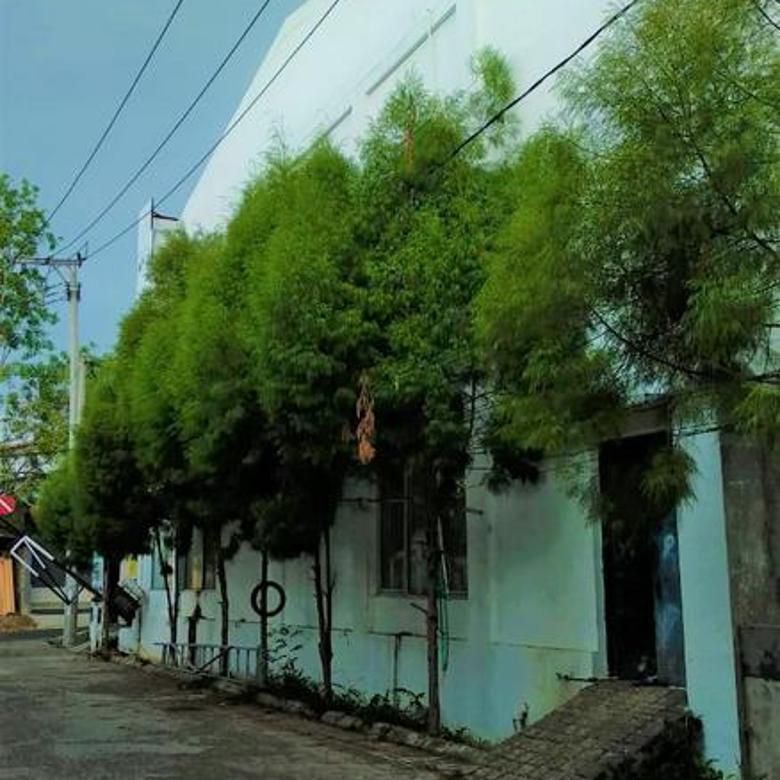 Ruko-Cianjur-3