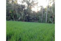 Tanah Dijual Jogja di Jl. Kaliurang, Tanah Jogja Dekat Merapi View