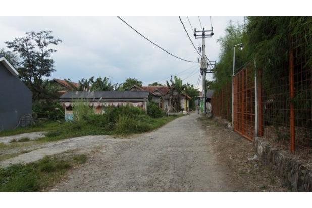 Modal 8 Juta, Tanpa DP Wilayah Kampus IPB: Jaminan 17698083