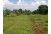 Tanah 1Ha di Cirebon, Jawa Barat