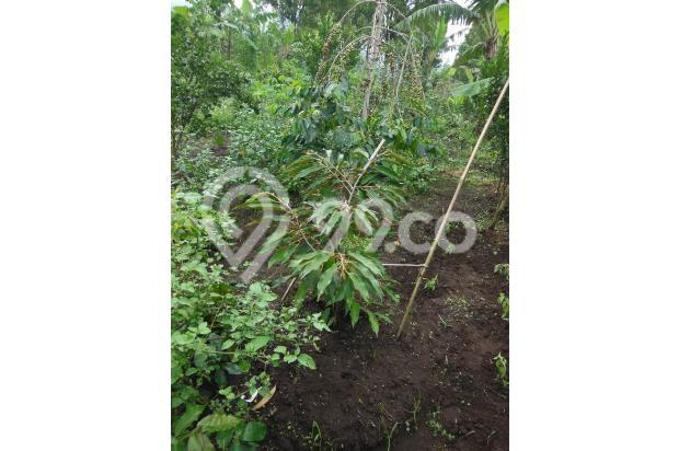 Tanah di Lembang dijual segera 16248734