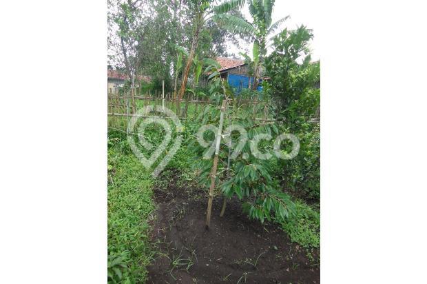 Tanah di Lembang dijual segera 16248740