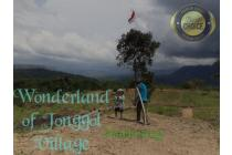 Dijual Tanah  Jonggol Village Investasi Tiada Henti di Jonggol Bogor