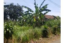 Jual Tanah di Desa Kemang, Kab. Bogor