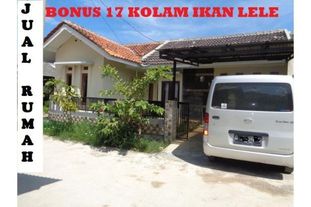 tanah murah bonus rumah & 17 kolam ikan aktif income 4jt/bln di bandung 7285785