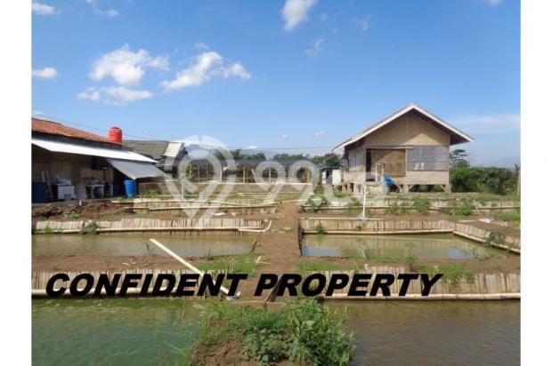 tanah murah bonus rumah & 17 kolam ikan aktif income 4jt/bln di bandung 7285787