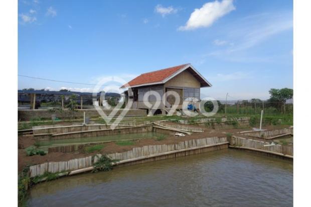 tanah murah bonus rumah & 17 kolam ikan aktif income 4jt/bln di bandung 7285788