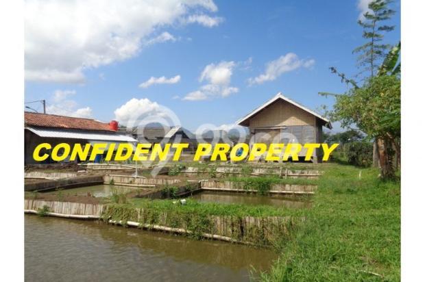 tanah murah bonus rumah & 17 kolam ikan aktif income 4jt/bln di bandung 7285795