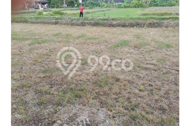 Sambut Bandaru Baru Wates, Investasi Tanah Kapling 14416849