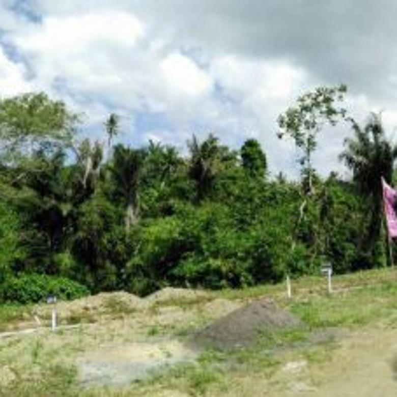 Rumah Villa Bali Mewah Mainroad Dan Private Pool Mulai 2M an