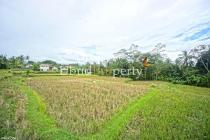 T.344 - A plot of vacant land located in the north of Ubud, about 7 KM from