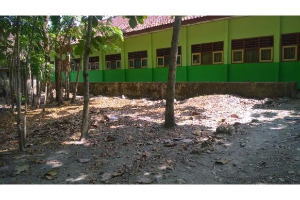 Tanah Dijual Bantul Murah, Tanah Pekarangan Cocok Untuk Hunian 12398571