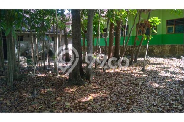 Tanah Dijual Bantul Murah, Tanah Pekarangan Cocok Untuk Hunian 12398580