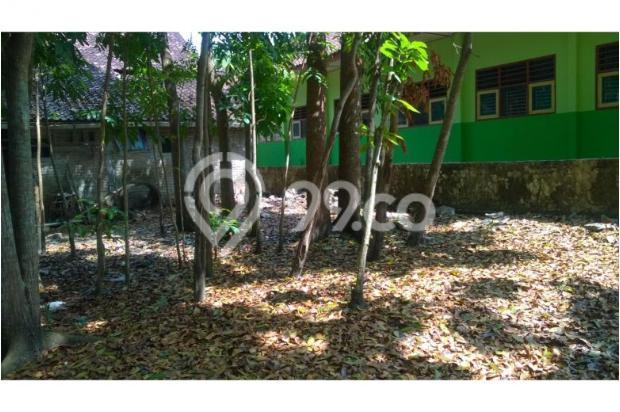 Tanah Dijual Bantul Murah, Tanah Pekarangan Cocok Untuk Hunian 12398581