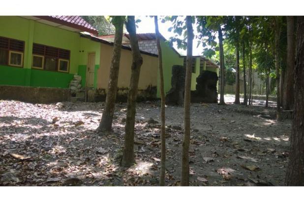 Tanah Dijual Bantul Murah, Tanah Pekarangan Cocok Untuk Hunian 12398582