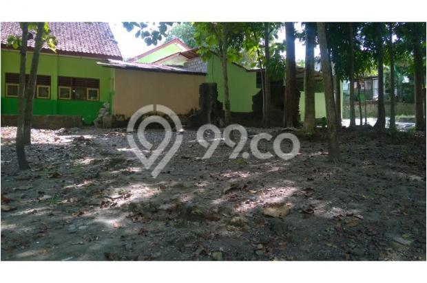 Tanah Dijual Bantul Murah, Tanah Pekarangan Cocok Untuk Hunian 12398584