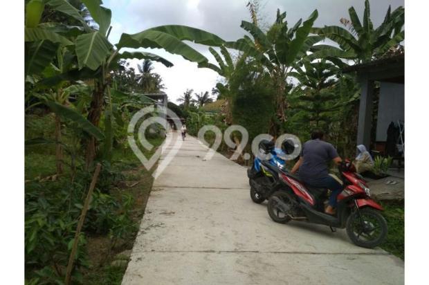 BEDA: Tanah Kaveling Site Plan Rapi Berbanjar, Petak Tanah Kampung Tidak 12900169
