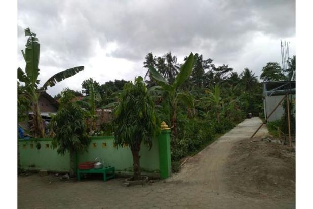 BEDA: Tanah Kaveling Site Plan Rapi Berbanjar, Petak Tanah Kampung Tidak 12900172