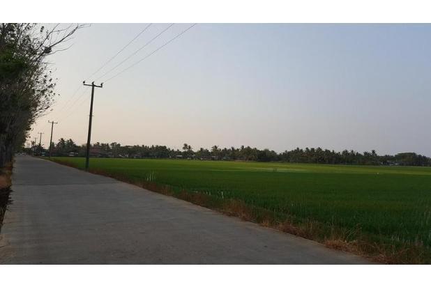 Rp5,93mily Tanah Dijual