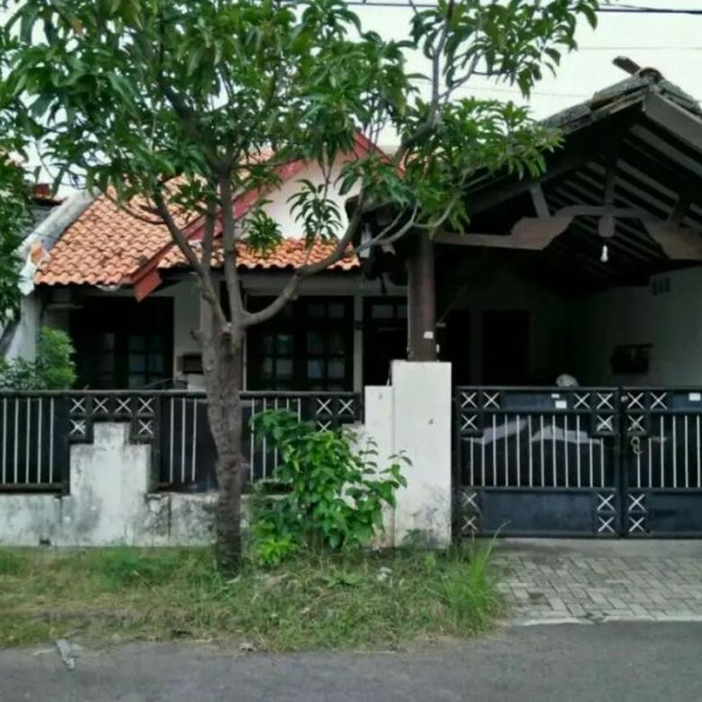 Rumah Area Rungkut Harga 1M-an dekat MERR