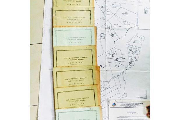 Rp1265trily Tanah Dijual