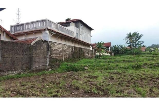 Lahan Gang Sawah, Ciapus Bogor 7857416