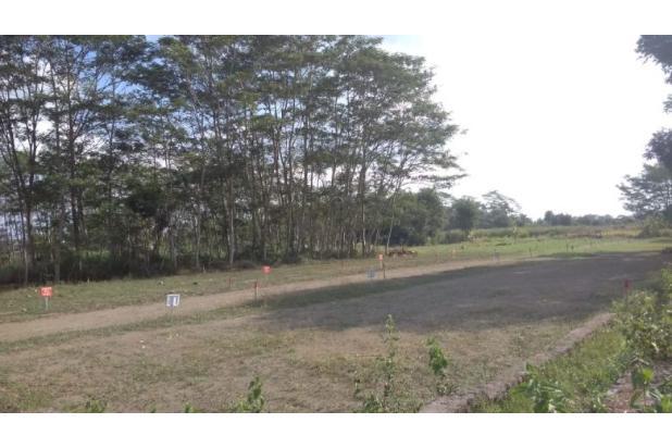 Rp422jt Tanah Dijual