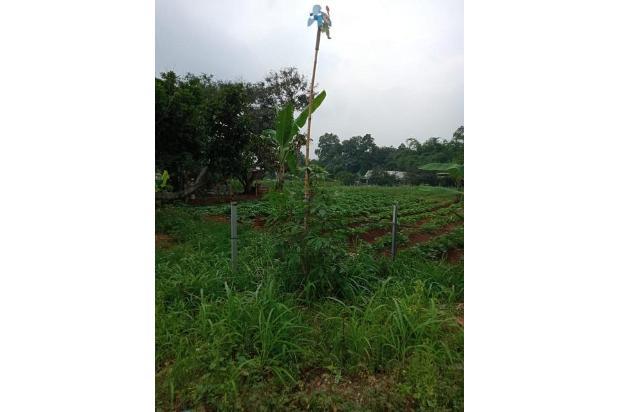 Rp70mily Tanah Dijual