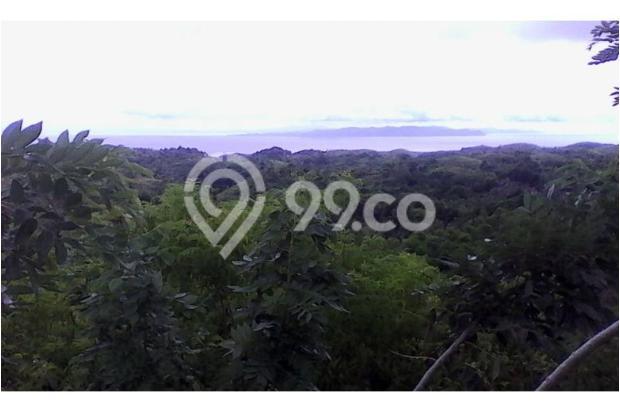 Kavling Nusa Penida Ocean View 10030056