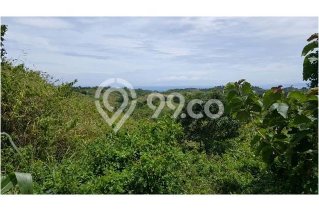 Kavling Nusa Penida Ocean View 10030058