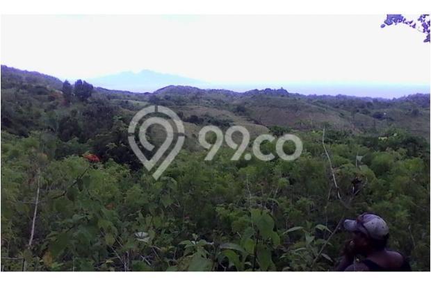 Kavling Nusa Penida Ocean View 10030059