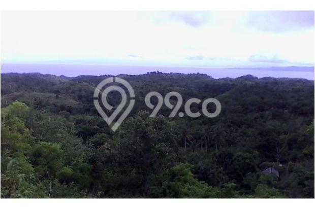 Kavling Nusa Penida Ocean View 10030063