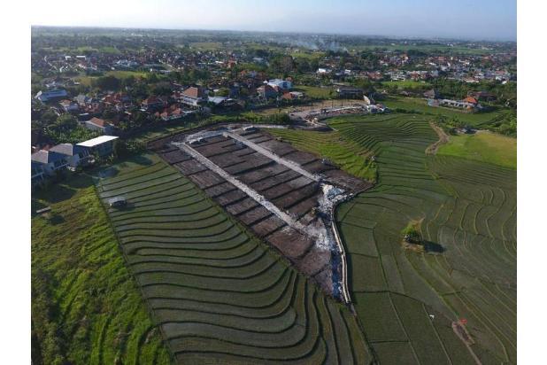 Rp1,01mily Tanah Dijual