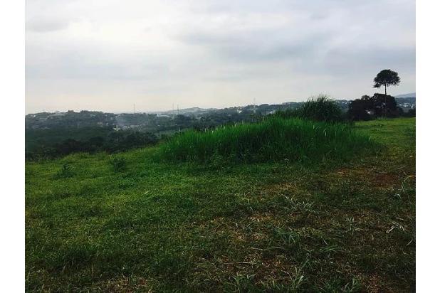 Rp49mily Tanah Dijual
