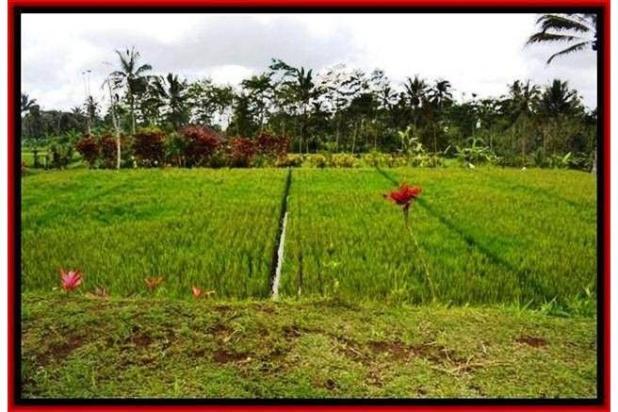 Rp5,71mily Tanah Dijual