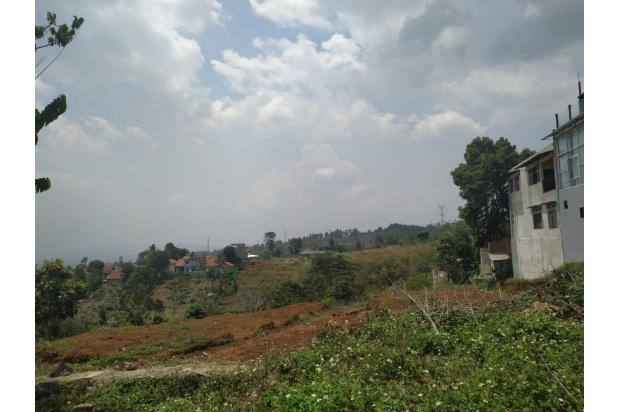 Rp17mily Tanah Dijual