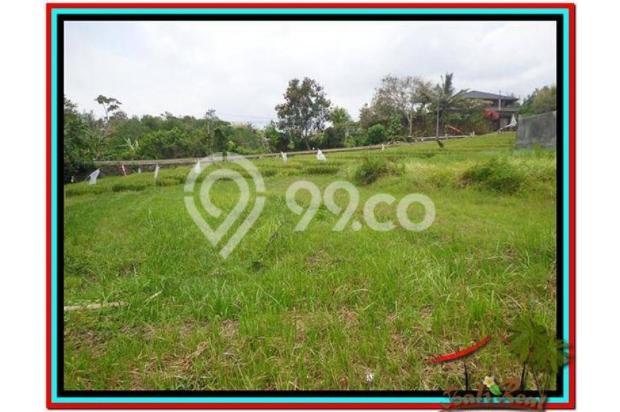 Tanah Strategis, 1.000 m2 View Sawah dan sungai , link villa di Canggu  3873349
