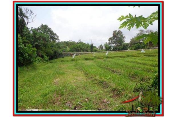 Tanah Strategis, 1.000 m2 View Sawah dan sungai , link villa di Canggu  3873351