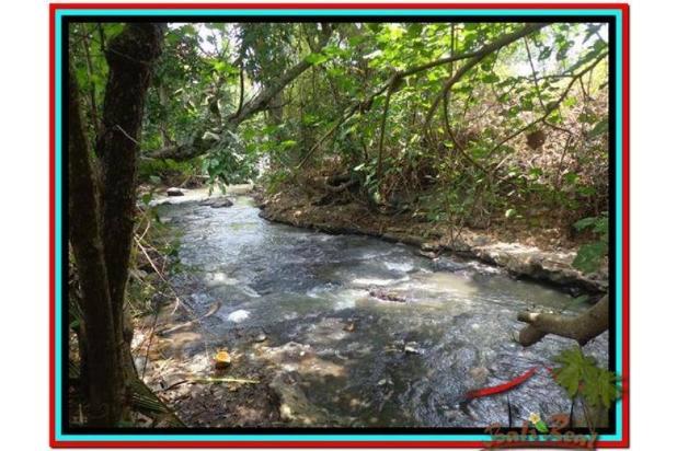 Tanah Strategis, 1.000 m2 View Sawah dan sungai , link villa di Canggu  3873352