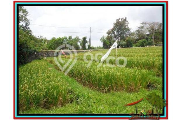 Tanah Strategis, 1.000 m2 View Sawah dan sungai , link villa di Canggu  3873357