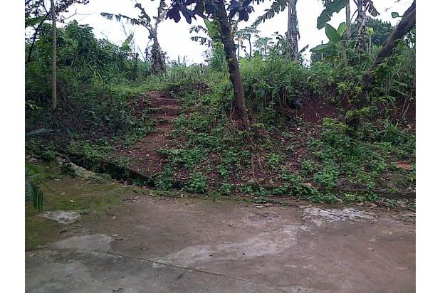 Tanah Matang Pasir Putih Sawangan Depok 15423334
