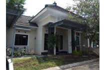 Disewakan Rumah Murah Area Perumahan Di Condongcatur