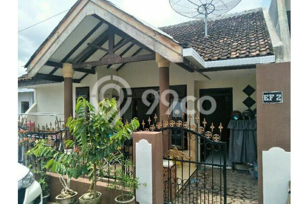 rumah di jual daerah ambulu 13872199