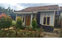 Rumah-Jambi-4