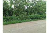 Tanah Murah ,  Strategis Di Pinggir Jalan Raya Haurgeulis -_ Bantarwaru .