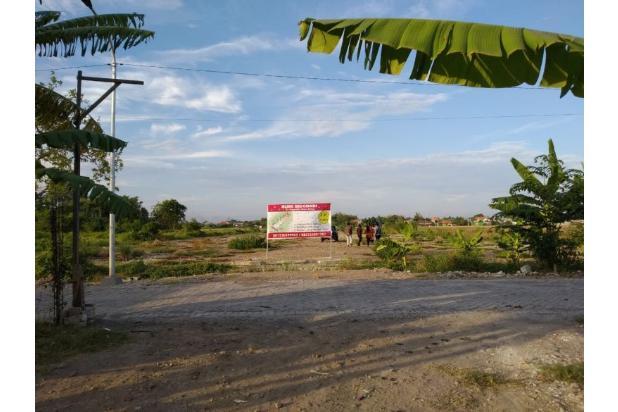 Rp186jt Tanah Dijual