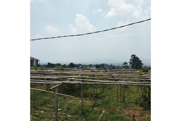 Rp3,75mily Tanah Dijual