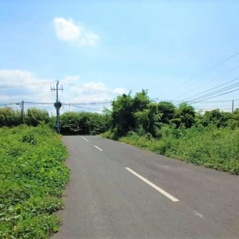 Tanah Dijual Di Legian Dewi Sri Kuta Untuk Komersil
