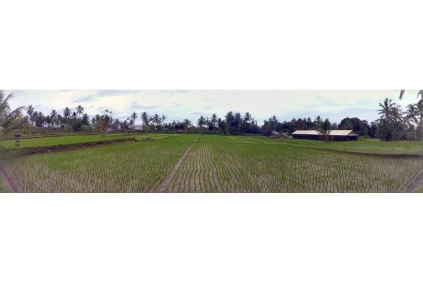 Rp577mily Tanah Dijual